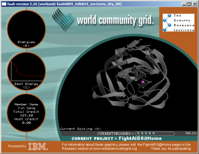 20080205093623-worldcommunitygrid.png