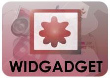 20090130180447-widgadget.jpg