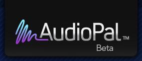 20090906104653-audiopal-logo.jpg